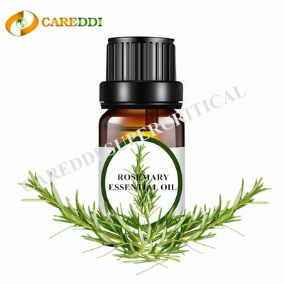 Rosemary Essential Oil Supercritical CO2 Extraction Rosemary Oil
